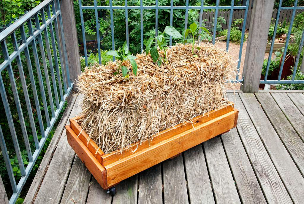 straw-bale-planter-web