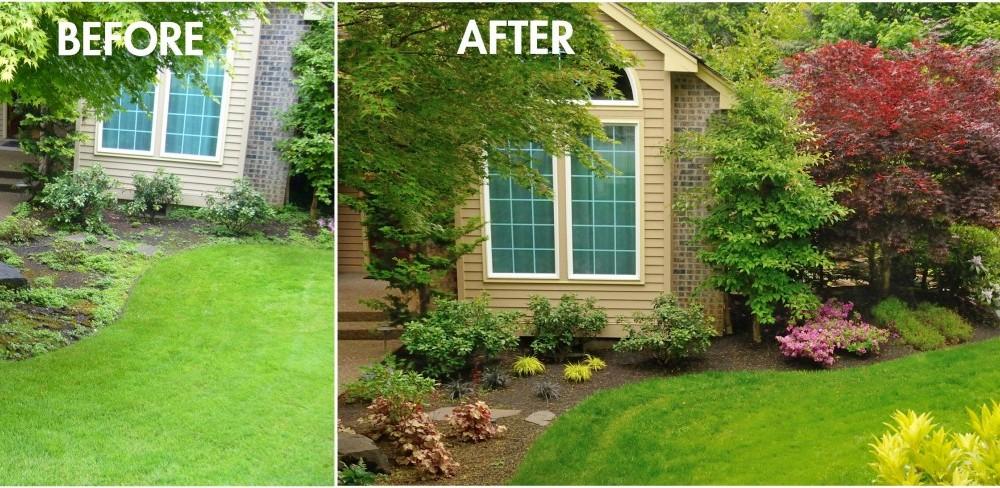 landscape front yard makeover