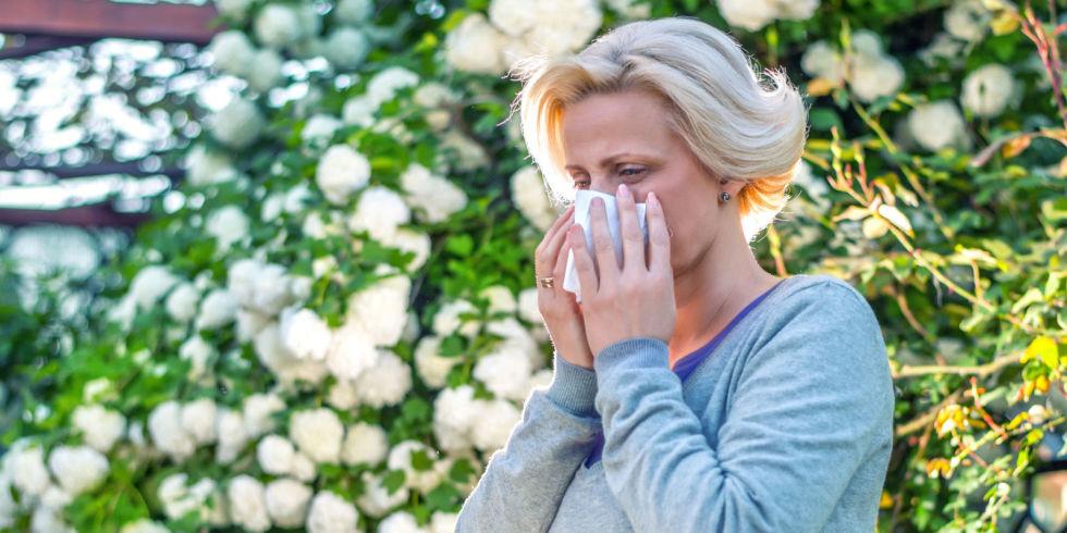 allergies garden